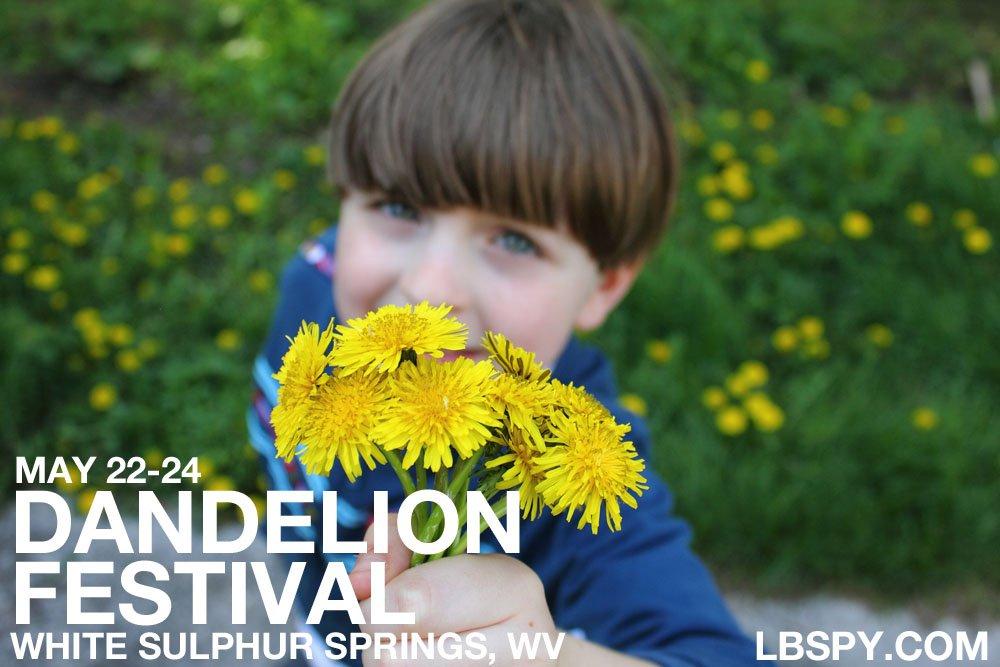 dandelion festival troy 2015 LBSPY