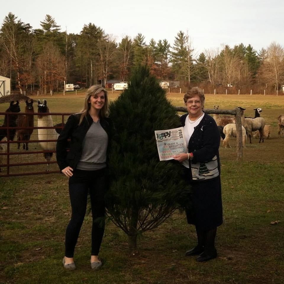 12 Ft Pre Lit Christmas Tree Costco: BIG CONGRATS TO AGNES SPENCE FOR WINNING OUR CHRISTMAS